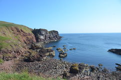 St. Abbs Head Royalty Free Stock Photo