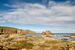 St Abbs rocky shoreline Stock Photography
