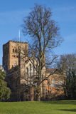 St. Albans Cathedral Stock Image