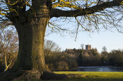 St. Albans Cathedral Viewed from Verulamium Park Royalty Free Stock Images