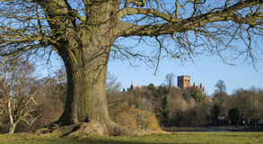 St. Albans in England Royalty Free Stock Photos