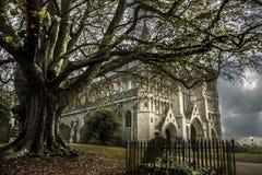 St Albans Kathedraal Hertfordshire, Engeland, het UK stock afbeelding