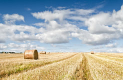 St Andrews' Bales royalty free stock image