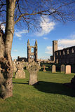 St Andrews cathedral & cemetary. A portion of the part-ruined cathedral of St Andrews is framed by a tree, with part of the cemetary visible in the foreground Stock Images