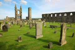 St Andrews cathedral grounds Royalty Free Stock Images