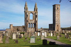 St Andrews cathedral grounds Stock Images