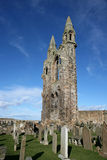 St Andrews cathedral grounds. St Andrews cathedral ruins surrounded by the cemetary stock photos
