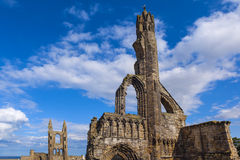 St Andrews Cathedral ruins Royalty Free Stock Image