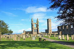 St Andrews Cathedral & St Rules Tower, Scotland Stock Images