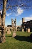 St Andrews kathedraal & begraafplaats stock afbeeldingen