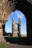 St Andrews Kathedraal door de boog stock afbeelding