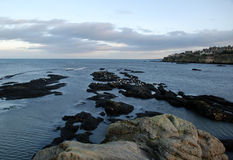 St. Andrews. Seagulls on rock with St. Andrews visible behind royalty free stock photography