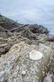 St Antonys lighthouse cornwall england uk Stock Photo