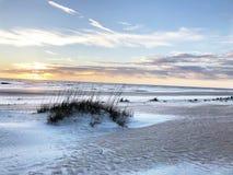 St. Augustine beach, Florida. Grass Sand Dunes Blue Sky St Augustine - Florida royalty free stock image