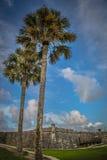 St Augustine Fort de los árboles de palmas Imágenes de archivo libres de regalías