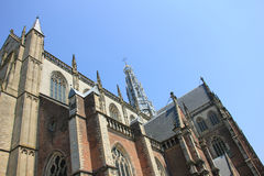 St Bavo Church - Haarlem Royalty Free Stock Photography