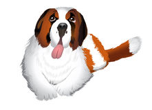 St Bernard dog Illustration Royalty Free Stock Photo