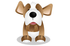 St Bernard Puppy Stock Image