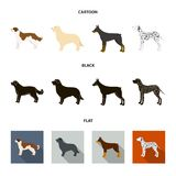 St. Bernard, retriever,doberman, labrador. Dog breeds set collection icons in cartoon,black,flat style vector symbol. St. Bernard, retriever.doberman, labrador Royalty Free Stock Images