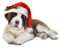 St. Bernard`s dog in Santa`s hat. Watercolor painting royalty free stock photo
