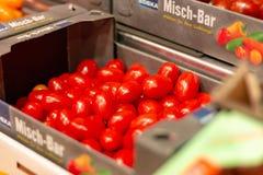 ST BLASIEN,德国- 2018年7月21日:有新微型tomatoe的箱子 库存图片
