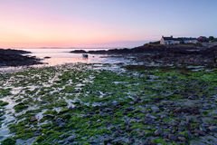 St. Brides Bay at low tide, Pembrokeshire, Wales Royalty Free Stock Photos