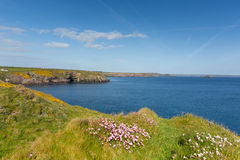 St Brides Bay Pembrokeshire West Wales UK near St Davids Stock Photography