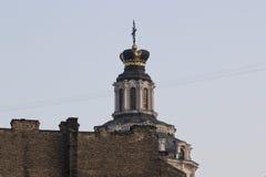 St Casimir Стоковое Фото