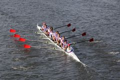 St Catharines Rowing Club races in the Head of Cha Royalty Free Stock Photography