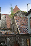 St. Catherine Passage - a little walkway in the old city Tallinn, Estonia. Royalty Free Stock Photos