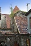 St Catherine Passage - un piccolo passaggio pedonale nella vecchia città Tallinn, Estonia fotografie stock libere da diritti