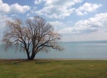 St Clair озера Стоковое Изображение RF