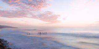 St Clair Beach à Dunedin, Nouvelle-Zélande images stock
