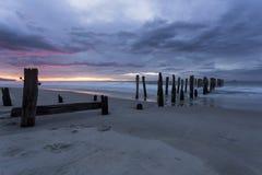 St Clair Beach, NZ Stock Photography