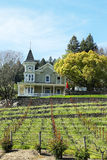 St. Clement Vineyards em Napa Valley Fotografia de Stock Royalty Free