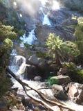 St Columba Falls, Pyengana, Tasmanien arkivbilder