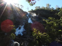 St Columba Falls, Pyengana, Tasmanien royaltyfria foton