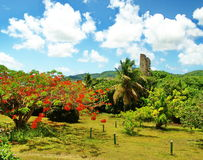 St. Croix Remains Sugar Plantation Stock Photo
