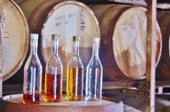 St croix usvi cruzan rum distillery. While on St. Croix visitor will inevitably enjoy some of favorite local spirit, rum. Near the top of the must-do list of stock image