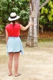 St croix usvi destylarni cruzan rumowa gra na dokładności Zdjęcia Royalty Free