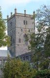 St Davids大教堂 库存图片