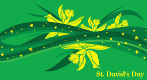 St. Davids Day Stock Photography