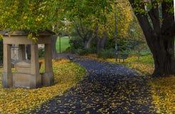 St davids park, hobart, tasmania Stock Images