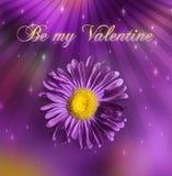 St. de Dag van de valentijnskaart Stock Foto's