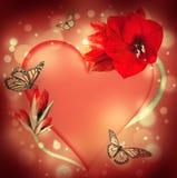 St. El día de tarjeta del día de San Valentín, corazón de orquídeas Imagen de archivo libre de regalías