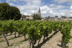 St. Emilion, France Foto de Stock