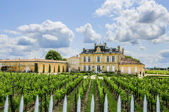 St. Emilion France Vinyard. Vineyards outside a castle at St. Emilion France stock photo