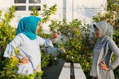 St?enden av ilskna tv? hijabkvinnor har mots?ttningar med grannar royaltyfri foto
