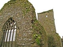 st för dominick s för 03 abbey Royaltyfri Bild