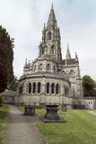 St-fenaBarre, kork, Irland Arkivbild